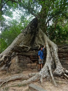 Tree roots growing over a wall at Ta Prohm