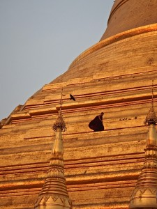 Monk walking on one level of Shwedagon Pagoda for scale!